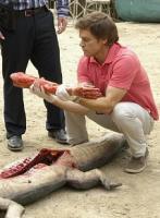 Dexter iv ep. 7
